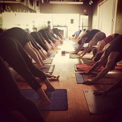 organic yoga vinyasa